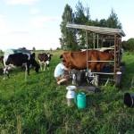 Da Milkman