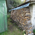 Still Wet Wood Stack
