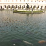 Fish in dat Park